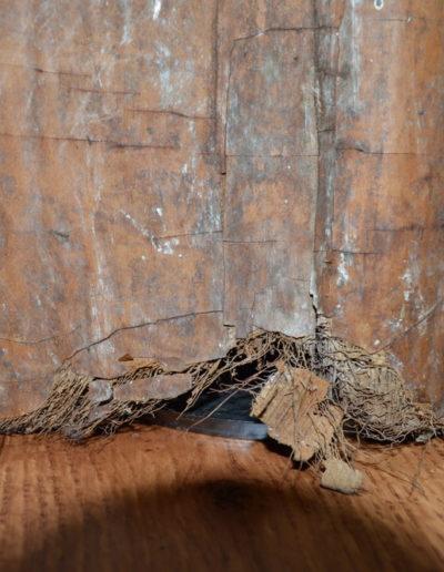Asmat Bark Shield 1228c_0011
