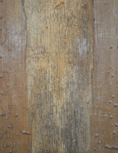 Asmat Bark Shield 1228c_0017
