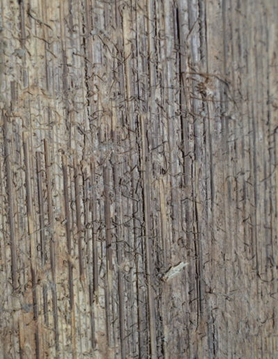 Asmat Bark Shield 1228c_0021