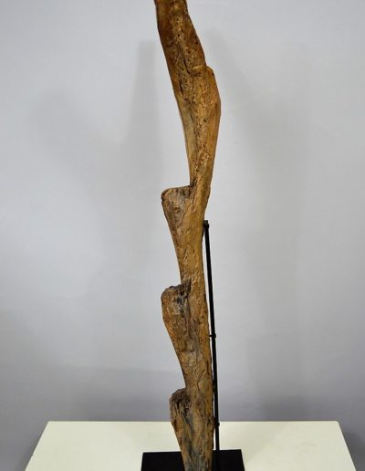 Dogon Ladder Seward Kennedy 0972 (3)