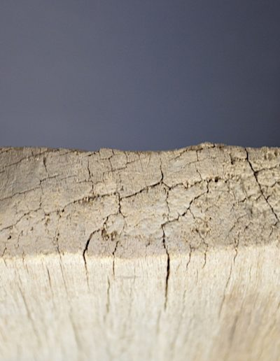 Dogon Granary Door 1481_0007
